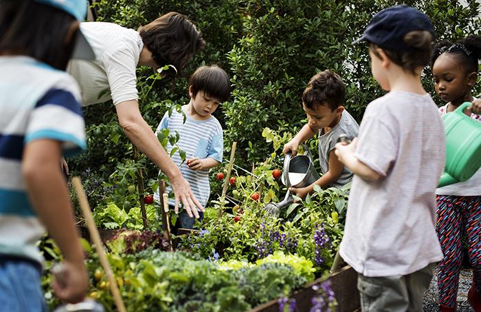 Upcycling & Gardening Workshop