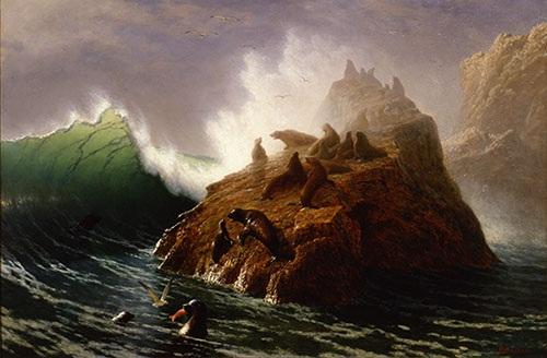 Bierstadt albertseal rock